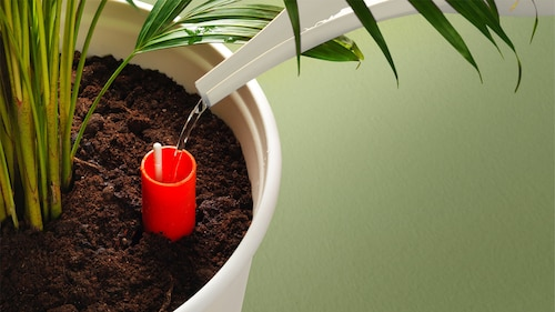 自动灌水花盆
