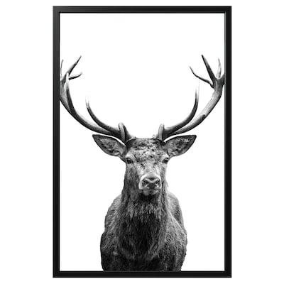 BJÖRKSTA Picture with frame, Horns/black, 118x78 cm