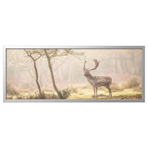BJÖRKSTA picture with frame Deer in glade/aluminium-colour 56 cm 140 cm