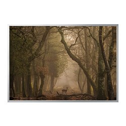 BJÖRKSTA picture with frame, Deer, aluminium-colour