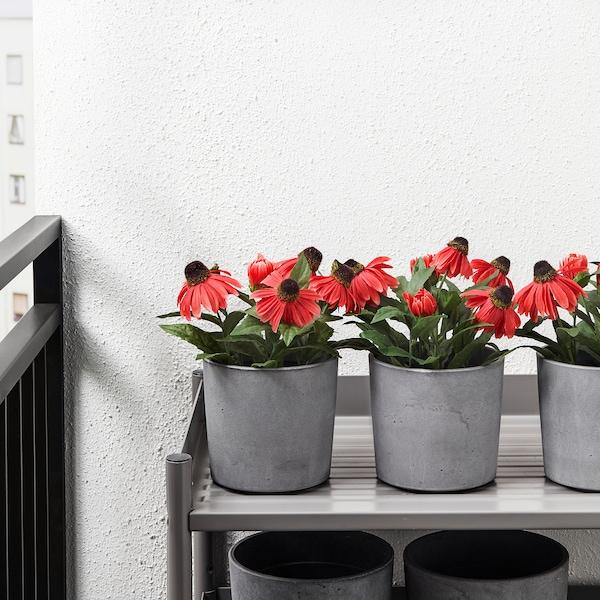 BOYSENBÄR plant pot in/outdoor light grey 13 cm 14 cm 12 cm 13 cm