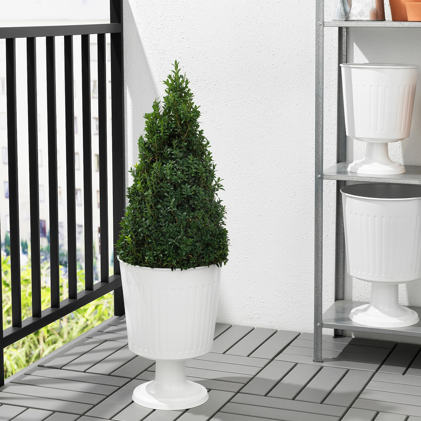 Citronmeliss Plant Urn In Outdoor