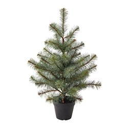 VINTERFEST artificial potted plant, in/outdoor Christmas tree
