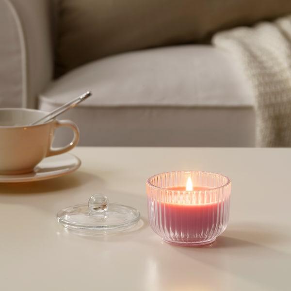 布鲁姆多夫特 香味烛和玻璃杯, 牡丹/粉红色, 9 厘米