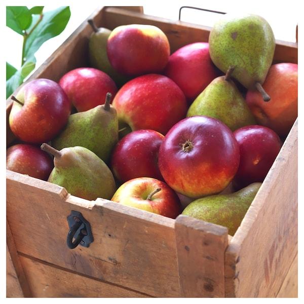 西恩利 香味烛和玻璃杯 苹果与梨/绿色 7.5 厘米 25 小时
