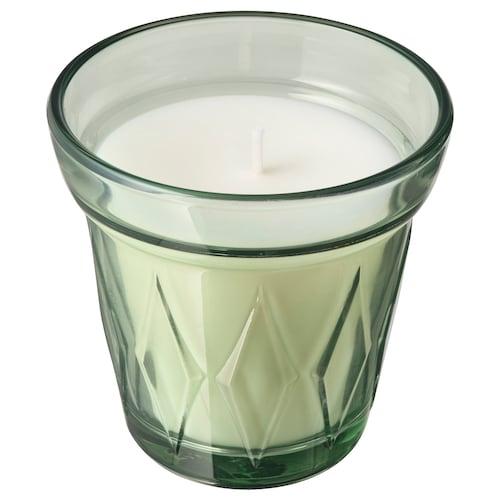 维多伏特 香味烛和玻璃杯 晨露/浅绿 8 厘米 8 厘米 25 小时