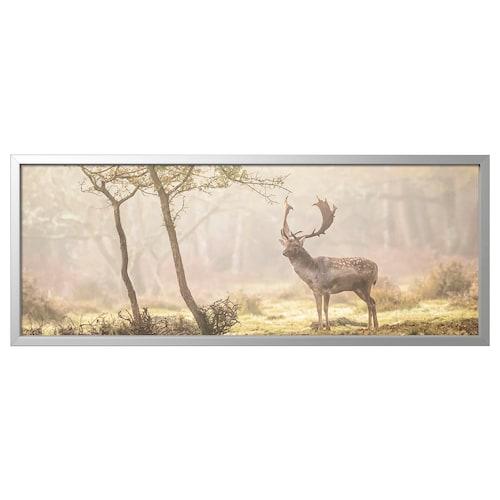 约纳斯塔 图片,带画框, 林间的鹿/铝色, 140x56 厘米