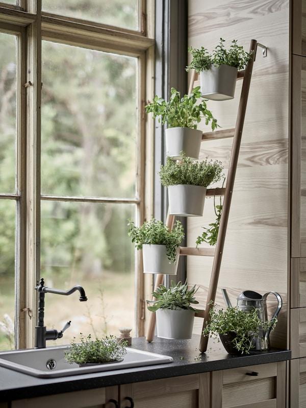 窗台边的厨房水槽旁,Satsumas 沙图玛斯 竹制植物架靠墙而立,上面摆放着五个花盆,白色花盆中种着绿色香草。