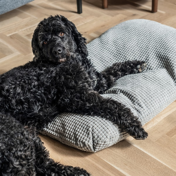 A black Labradoodle dog with caramel eyes relaxes on top of a cosy grey LURVIG cushion.