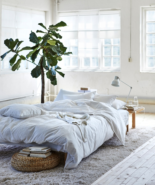 A low bed with white bedding on a beige rug in the centre of a white room.