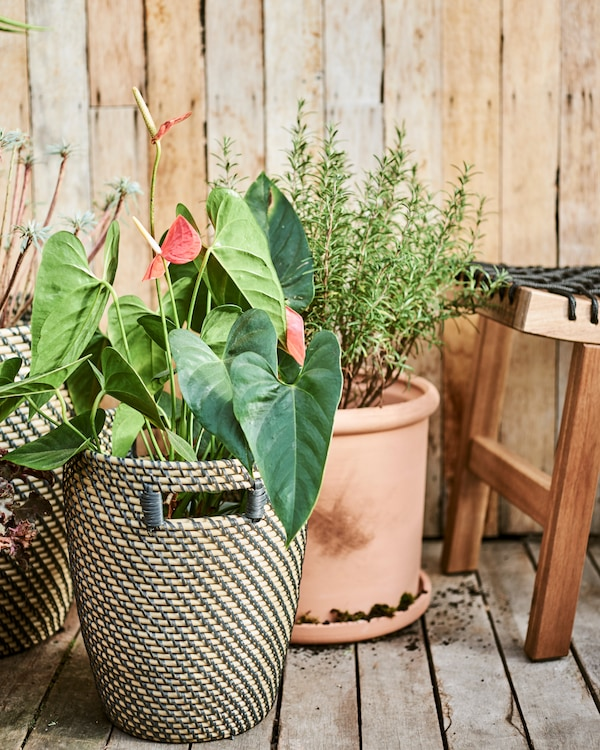 A mix of terracotta and natural fibre plant pots on an outdoor decking area next to a wood stool with black rope weave seat.