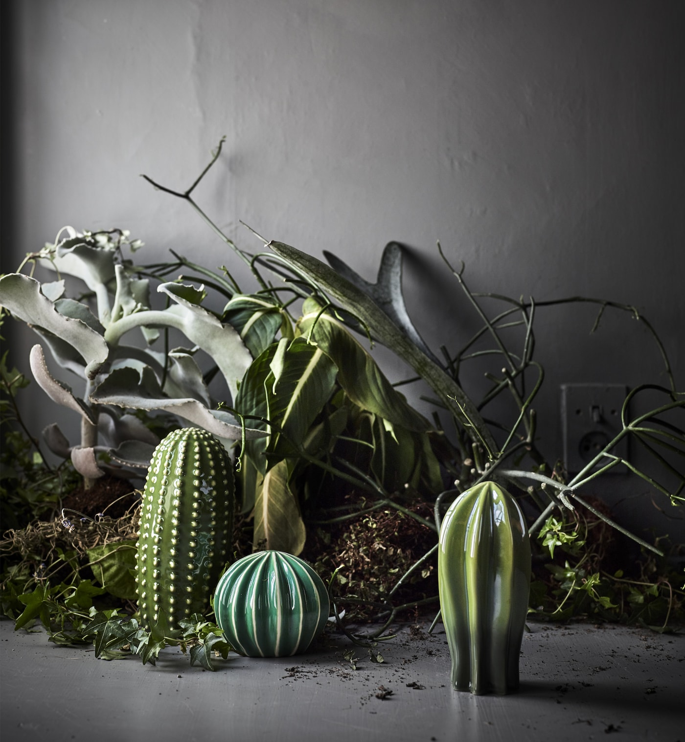 A set of three ceramic cactuses in different shapes and sizes, shown together with real green plants.