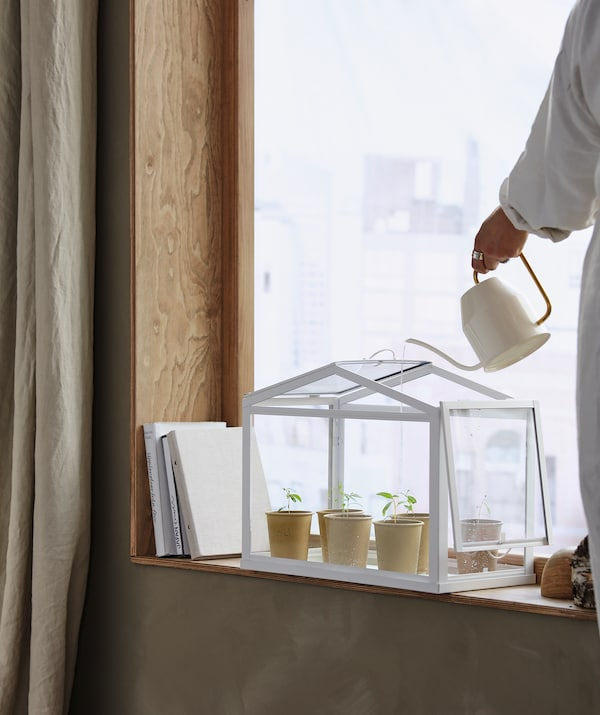 A SOCKER miniature greenhouse placed in a windowsill. A woman waters the seedlings within with a VATTENKRASSE watering can.