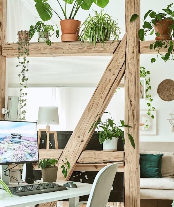 A型框架木梁、植物和充当屏风的卷帘将一个家庭办公室与主客厅隔开。