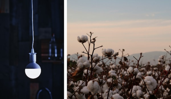 All IKEA lighting is energy-efficient LED and all of the cotton used in products comes from more sustainable sources.