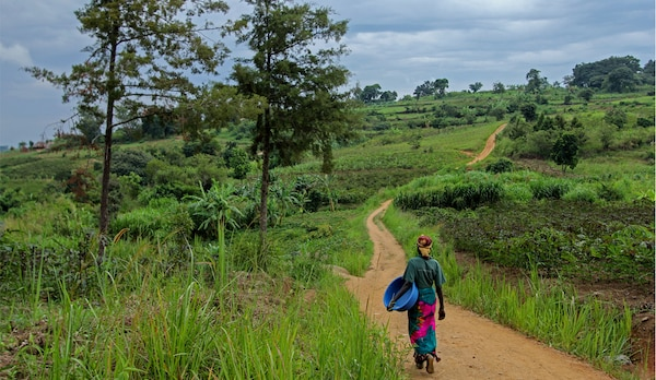 An image of a person walking on a path in the Ugandan countryside.