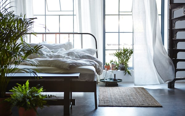 An unmade bed in a bedroom with the windows open, a rug on the floor and lots of green plants.