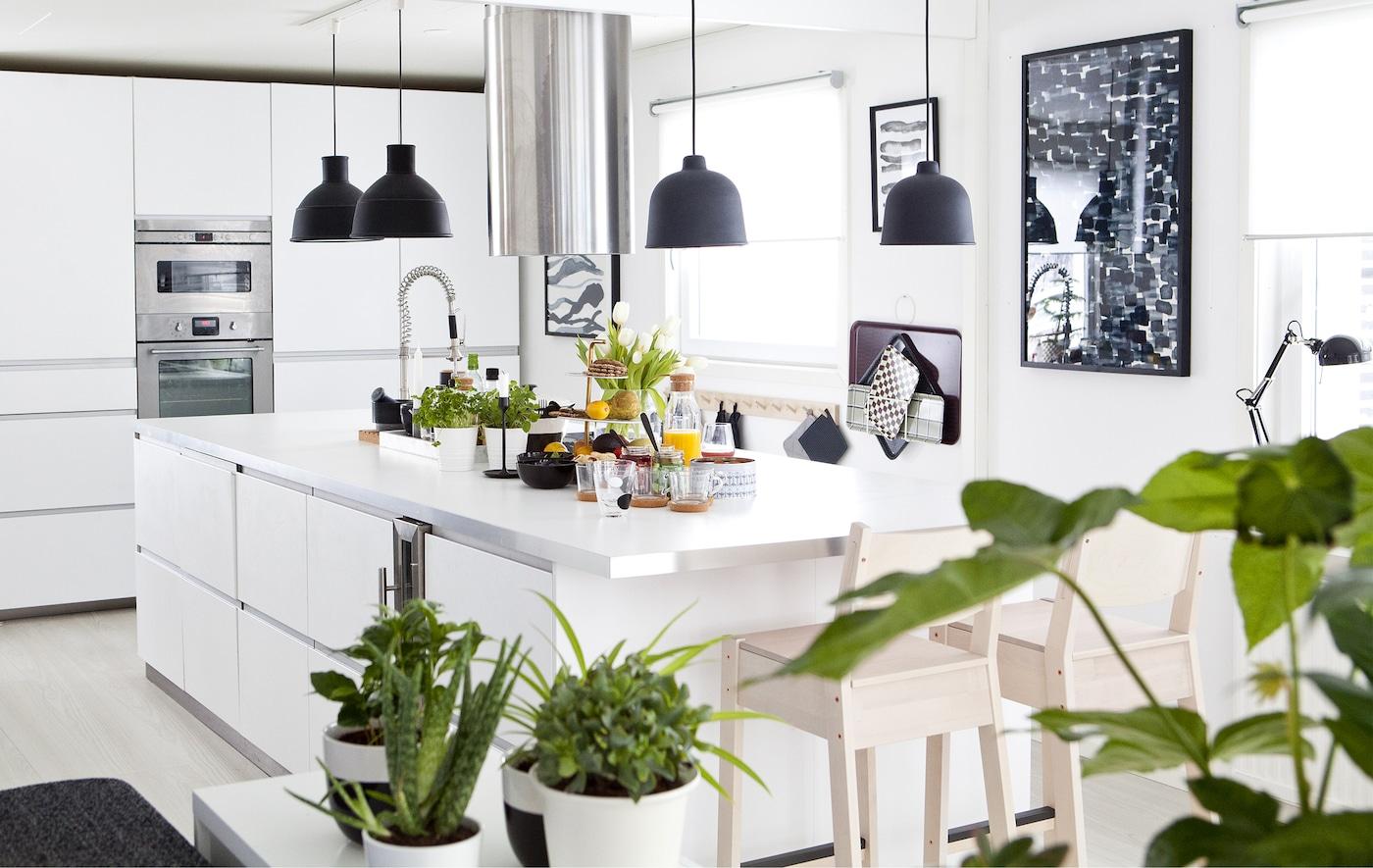 白色厨房内饰有黑色细节,点缀着绿色植物。