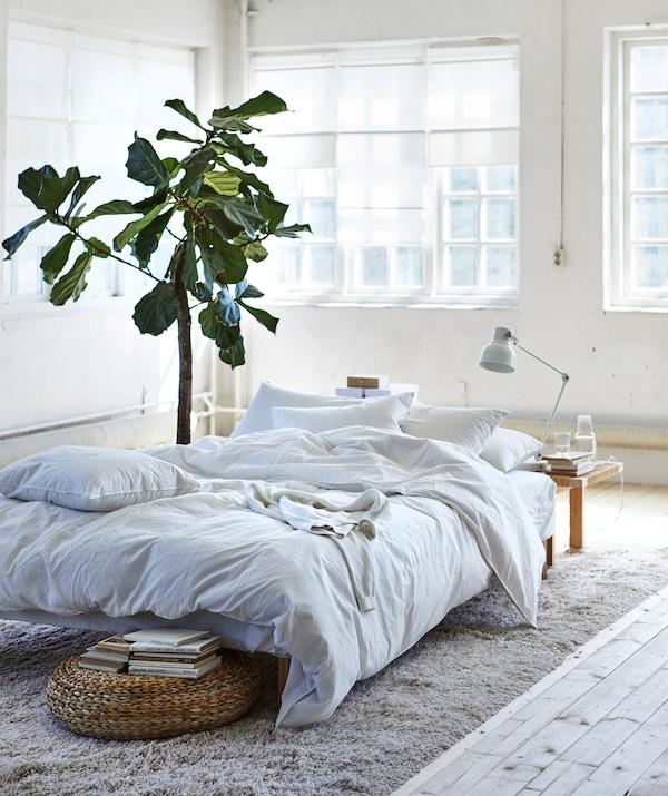 白色房间的正中央摆放着一块米色地毯,上面放着一张铺有白色床上用品的低床。