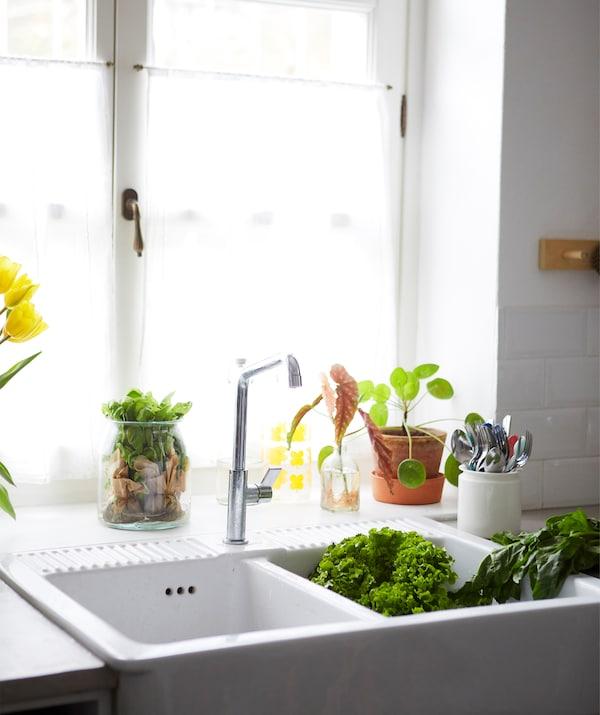 窗户边摆着植物,前面是一个大型白色双缸水槽。