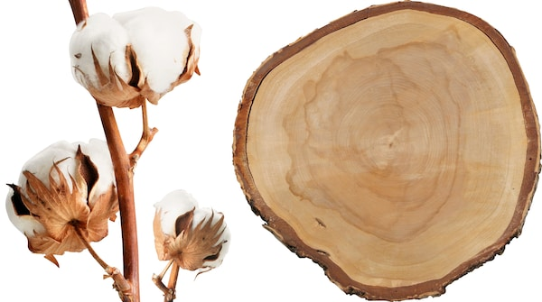 Cotton and wood from more sustainable sources.