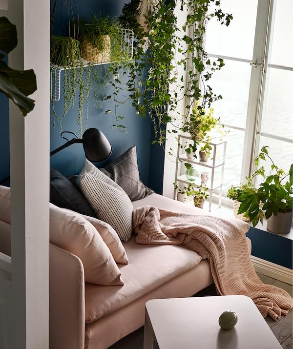 高大的窗户边,阳光洒落在贵妃椅上。靠垫、休闲毯和阅读灯。植物摆放在窗台和墙搁板上,垂悬下来。