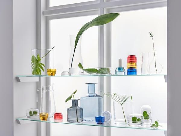 光线透过装有搁板的窗户,上面摆放着玻璃瓶、罐子和植物。