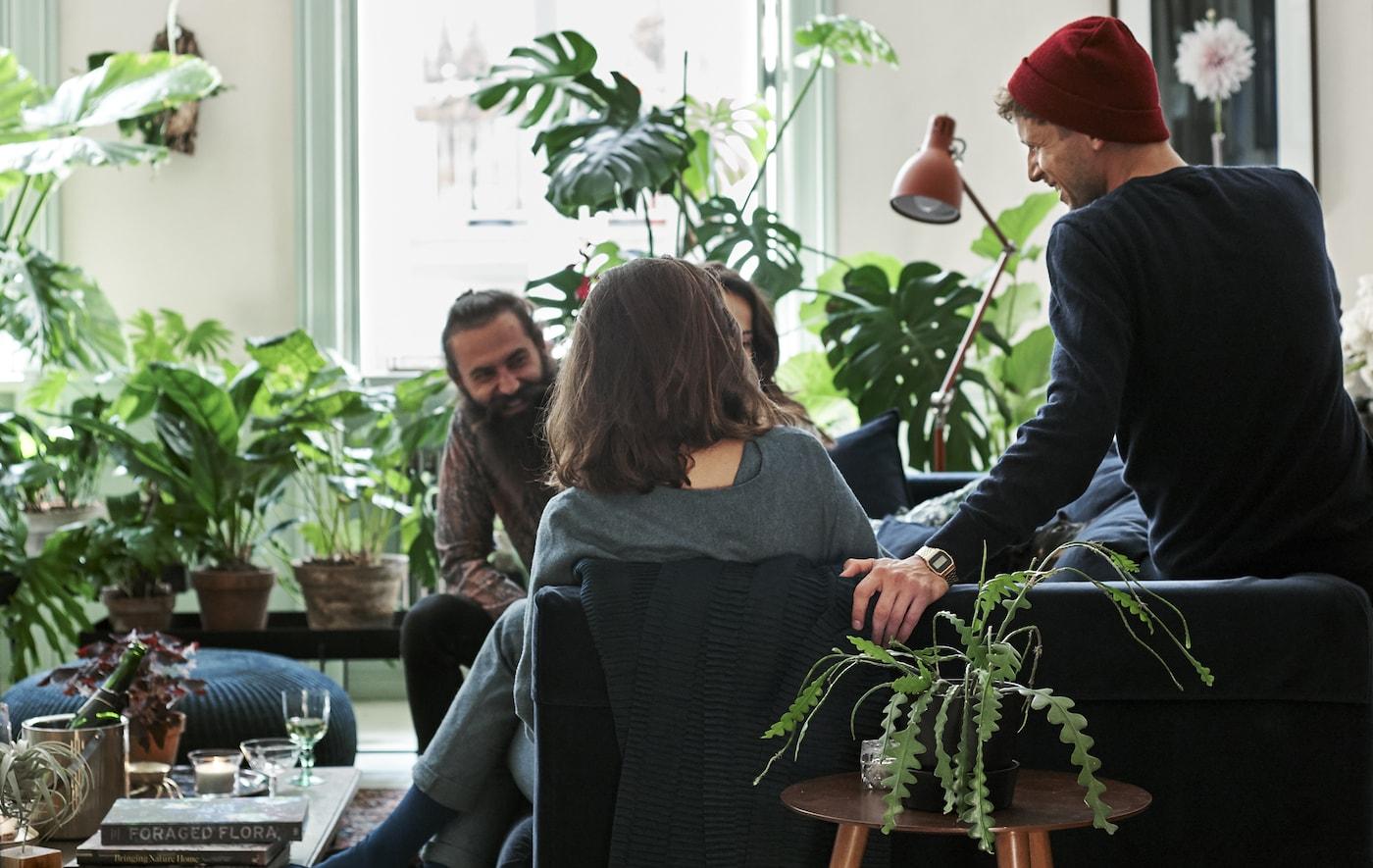 客人坐在客厅里的深蓝色天鹅绒沙发上,客厅里摆放着植物和植物印花纺织品。