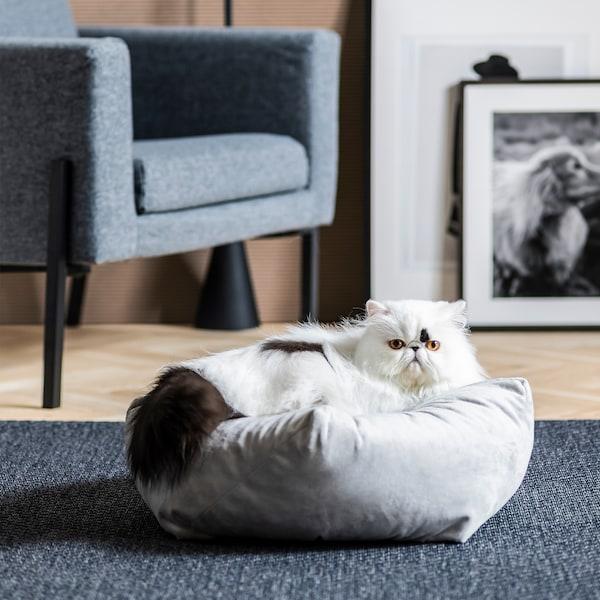 客厅里摆放着扶手椅和艺术品,地上铺着镶木地板。一只猫躺在矮凳上,地面上铺着地毯。