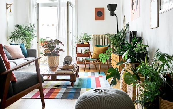 客厅连着敞开的法式阳台门,并配有各种柔软座椅和货盘茶几,铺着色彩缤纷的地毯,放着几盆室内植物。