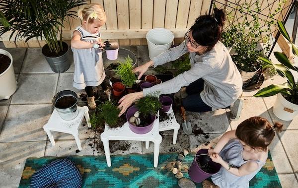 两名儿童和一位家长正在将土铲入花盆中