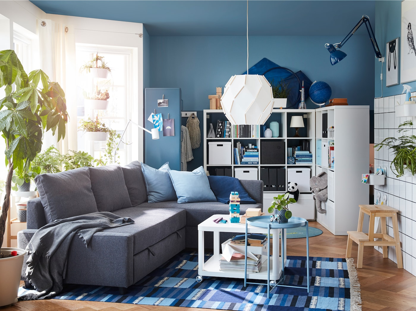 Living room with a dark grey corner sofa-bed, a blue-patterned rug and a freestanding shelving unit with space behind it.