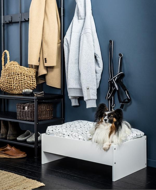 门厅里的搁板和壁架用于存放户外服饰。一只狗坐在鞋架旁的狗床里。