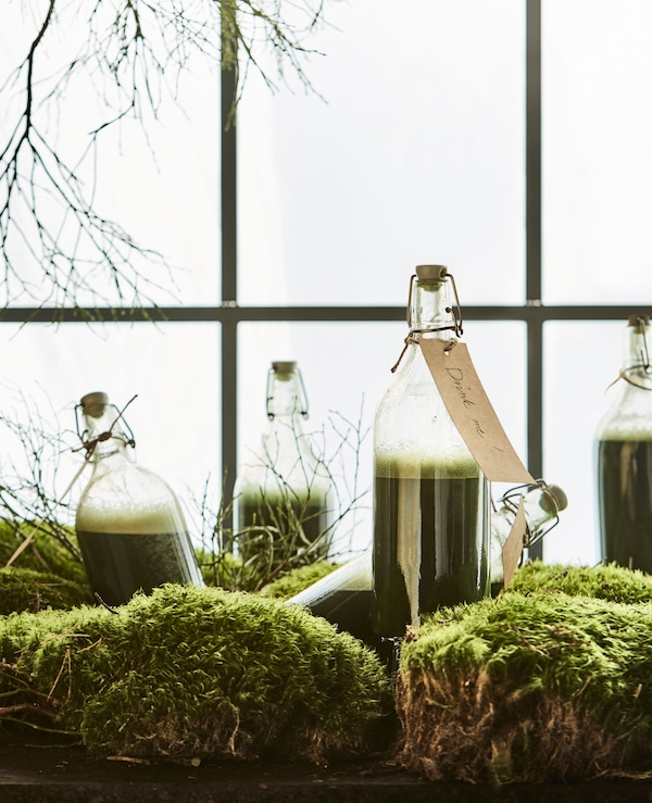 Moss and branches sit in a window with glass bottles filled with green juice.