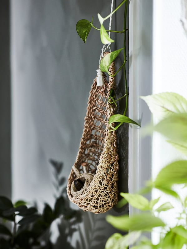 On a green wall, a hanging storage nest made of banana fibre, filled with a cotton spool.