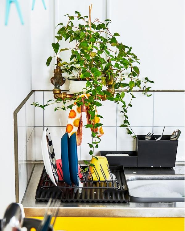 配备餐具和刀叉滤干架的厨房工作台,其上方的绿叶植物恰好把管道遮了起来。