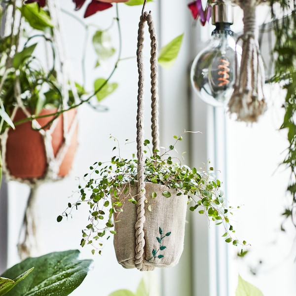 Several plants creating an urban jungle feel in a window, showing handmade jute plant pots with embroidered details.
