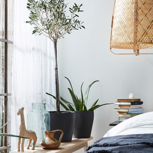 深灰色花盆中的绿色植物、长椅、藤制吊灯和白色透明窗帘。