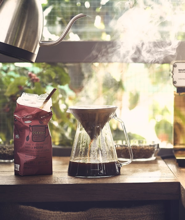 Steaming coffee-brewing set against a backdrop of a lush garden: hot water from a kettle filtering down into a glass jug.