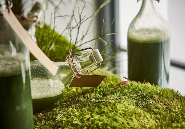 特写:一瓶绿色饮品平放在苔藓上。