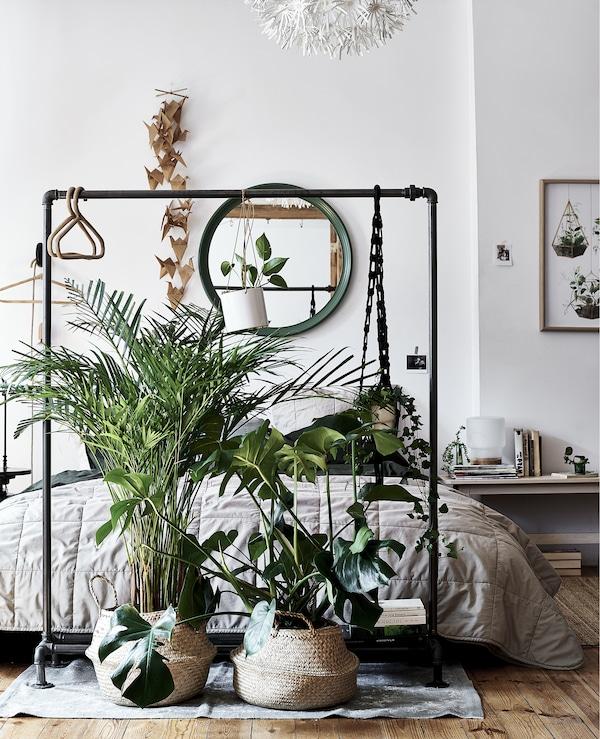 卧室的床尾摆放着植物和挂杆。