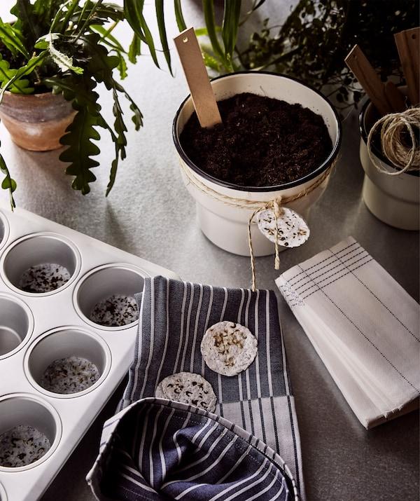 小蛋糕烤盘里有绿色植物和自制植物培养塞,米色花盆礼物上系满了自制种荚。