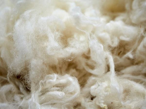 羊毛是一种可持续、可再生的天然材料,常用于制作宜家地毯。