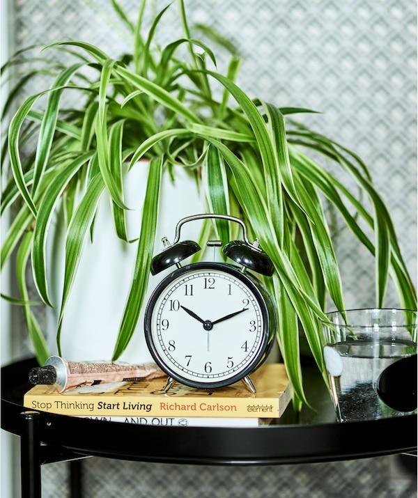 一个黑色闹钟放在一堆书上,黑色的托盘桌上还有一株种在白色花盆里的吊兰。
