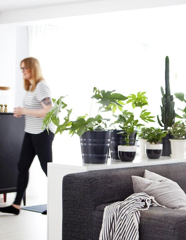 一个女人站在黑白色与绿色的生活空间里。