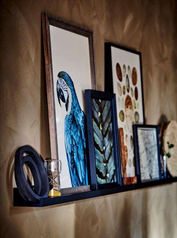 一个深蓝色的MOSSLANDA 莫兰达 壁式图片架,上面摆放着褐色、深蓝色和黑色的画框和图片。