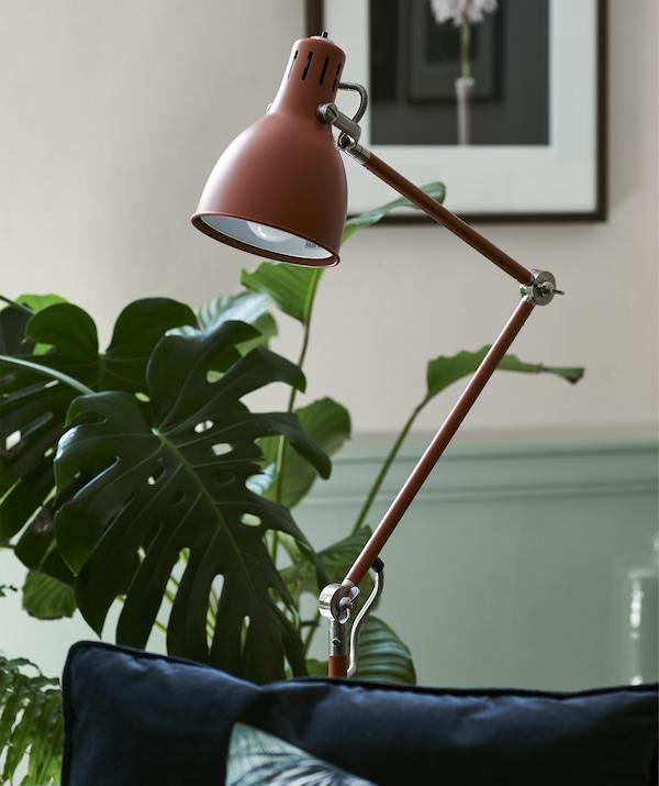 一间摆放着植物的房间里,点缀着一盏红/褐色落地灯。