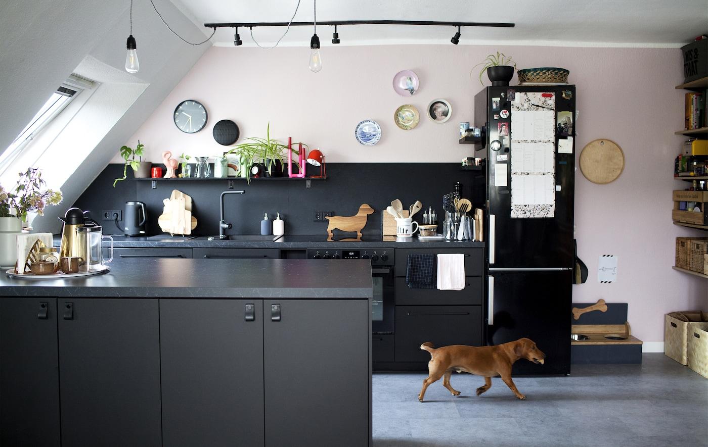 一间黑色、白色和淡粉色的开放式厨房和一只小狗。