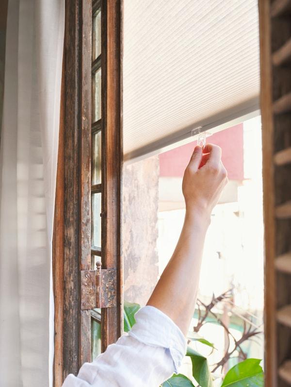 一位女士拉下白色百叶帘,遮住挂着白色窗帘的木框窗户。