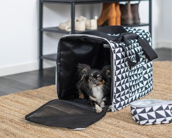 一只黑色蝴蝶犬正在几何图案的 LURVIG 乐维格 旅行包中休息,一旁是相配的旅行宠物食盆。